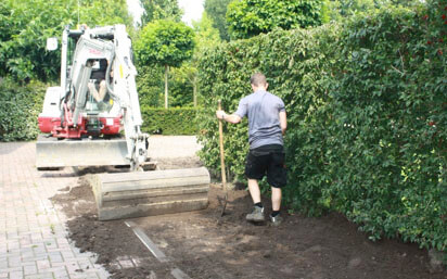 conventional hedge